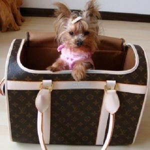 Bolsa Transporte de Cães e Gatos Louis Vuitton