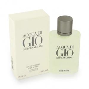 Perfume Acqua Di Giò - 100ml